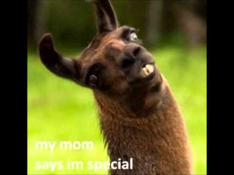 """""""My mom says I'm special"""" xD hqdefault"""