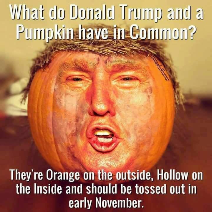trump-pumpkin-common-58126ce25f9b58564cf1f586