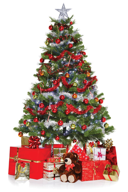 *is pitting up the Christmas tree at the front entrance of our home. Is having little hard time to g
