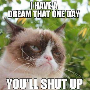 37b9fea4e75bcec758575f90e15de701–grumpy-cat-humor-grumpy-cat-quotes