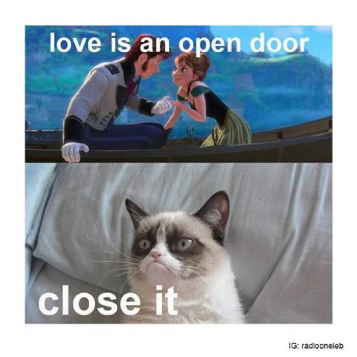 Love-is-an-open-door—cat-meme