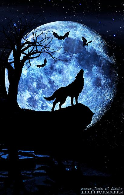 29081578d1fa8d4c39f2966955141e8e–howling-wolf-tattoo-wolf-howling-at-moon