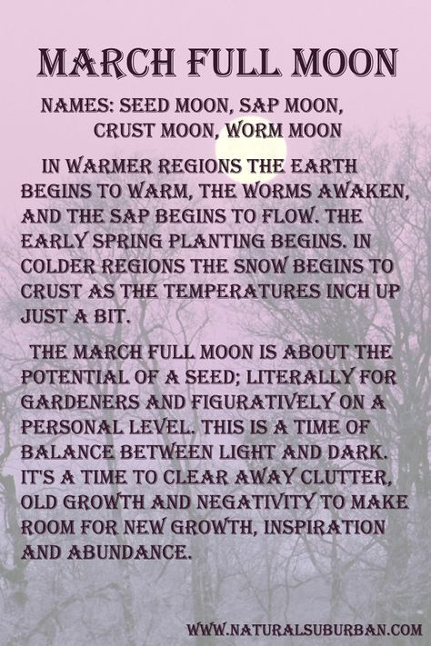***4d912e8a8bc92c29d9b0a08f6110938b–sun-moon-stars-the-moon