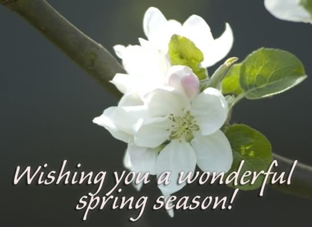 And the weekend is just getting started! Happy Friday everyone! Spring