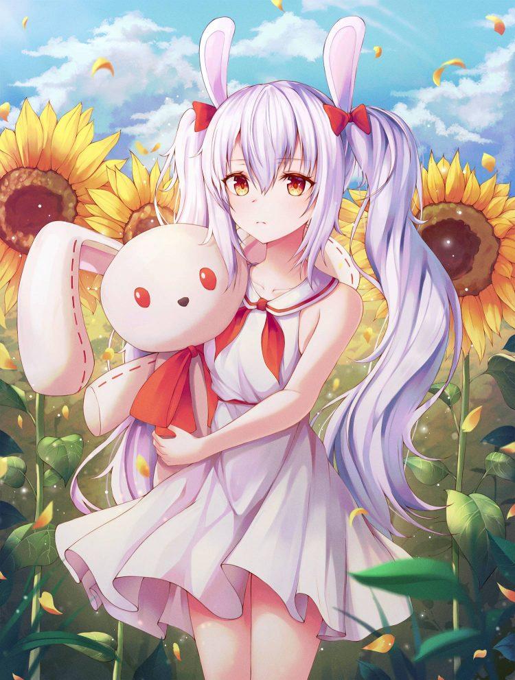 ginkachi.bunny.mLIc67y