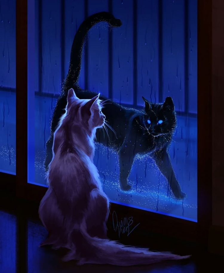 *In Nekomatalandia which allowed the werecats of the clan to easily enter a portal and enter their n