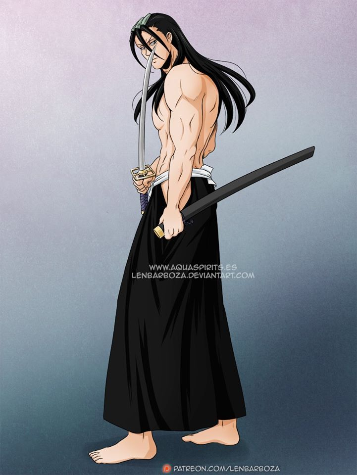 *Byakuya was busy training within Kyokai Border Realm when he noticed Renji approaching him.* 205071