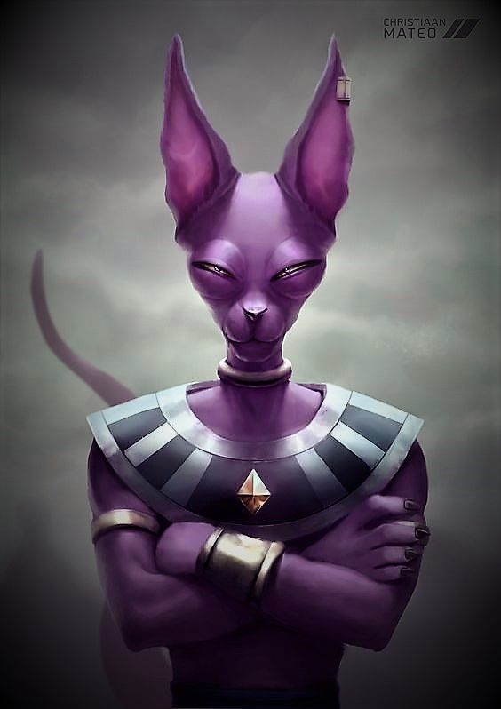 *Lord Beerus had taken some time to deal with his godly duties in other dimensions. He gave his tour
