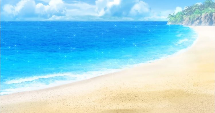 *He had some of his photography staff and students take some photos of the beach itself and capture