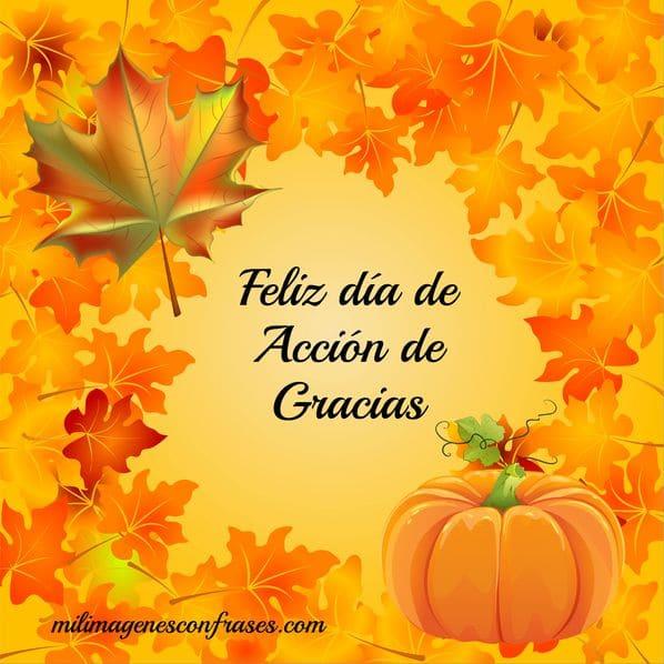 // A mi gente querida! imagenes-thanksgiving-accion-de-gracias_4