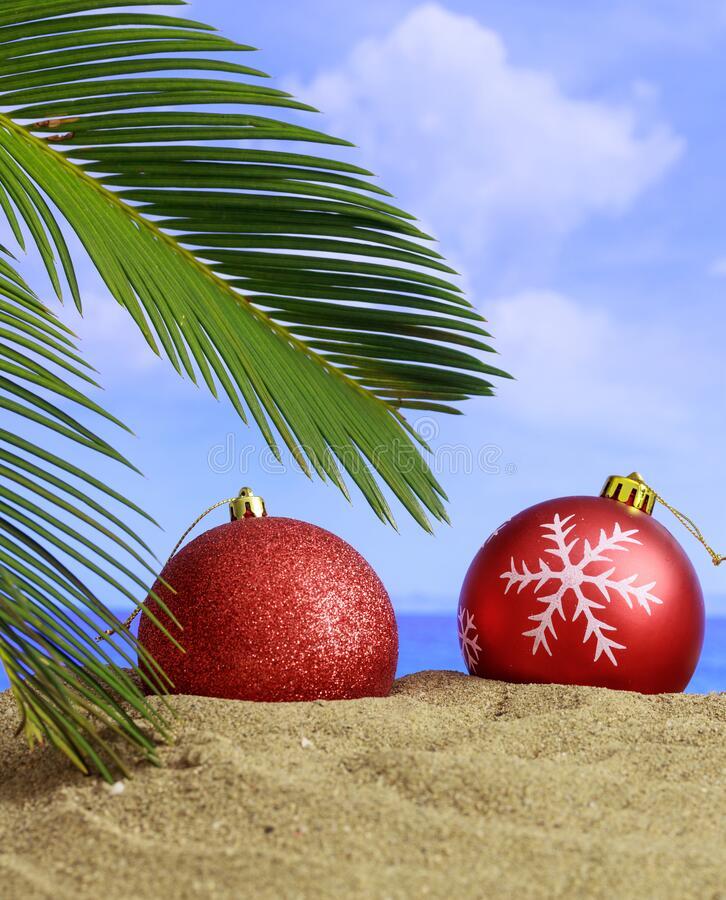 summer-xmas-holidays-concept-christmas-ornaments-sandy-beach-palm-tree-blue-sea-sky-background-verti