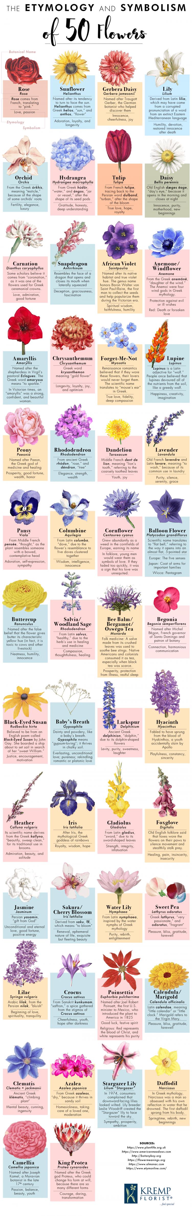 etymology-symbolism-50-flowers-5_compressed