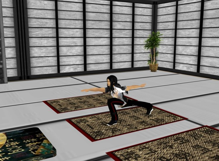*Tarotachi decided to stop by the Dojo of sensei Ranma to see if he could fit in some training time