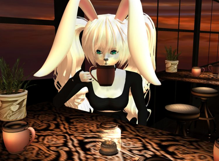 *after a bit of time at the textbook store, she went to the Sugar Campus Library Cafe to have a cup