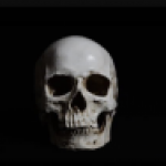 Profile picture of Bones