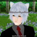 Profile picture of Miketsukami Soushi TestarossaSakata (SilverSugarDemonFox)