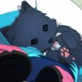 "Profile picture of Renne ""Reny"" Seragaki [AllmateDog]"