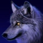 Profile picture of Wulfsyda